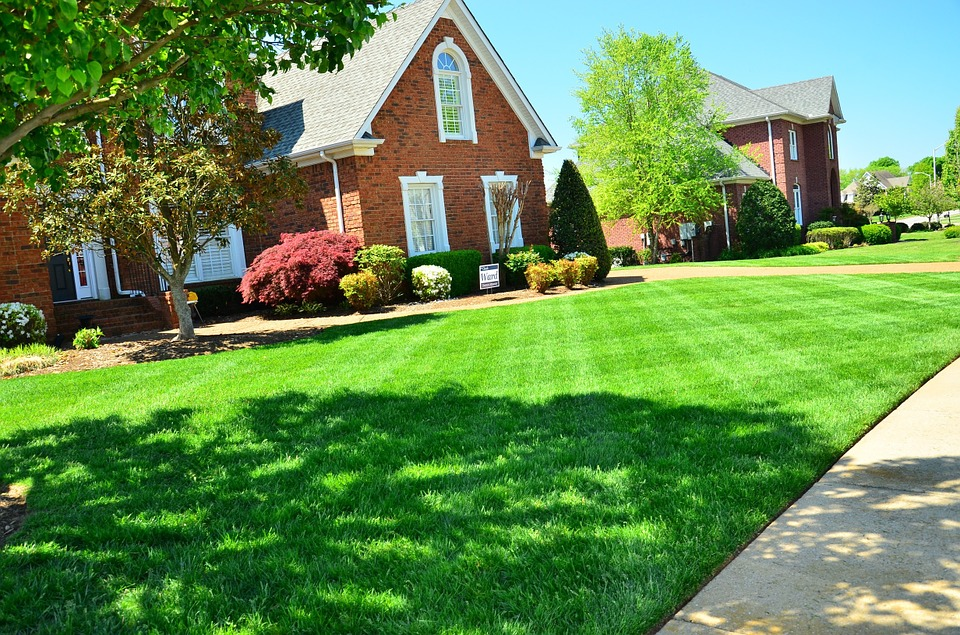 12 Lawn Maintenance Tips for Every Household