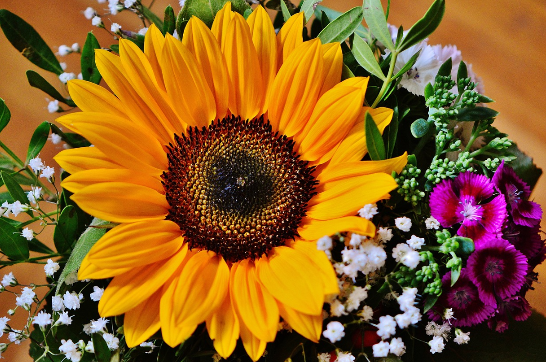 Gorgeous Flower Gifts for Mother's Day sunflower